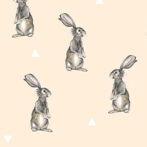 Rabbits + Triangles on Peach