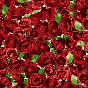 Abundant Roses - Red