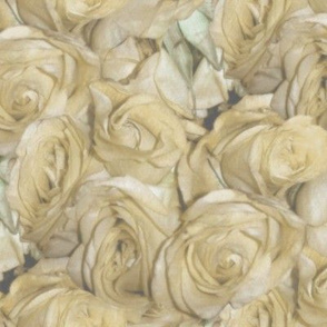 A Dozen Dozen Roses ~ Antique Cream Wash