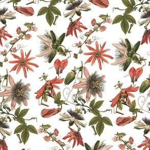 Tropicalia Floral