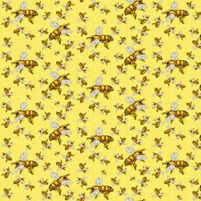 Bees_Dancing_Bees