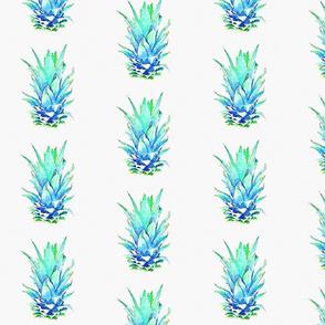 Pineapple foliage