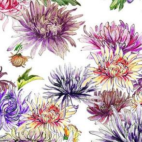 Chrysanthemum Scatter