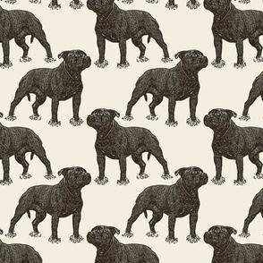 Posing Staffordshire Bull Terrier - sepia