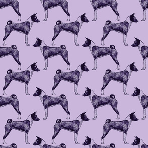 Standing Basenji - purple