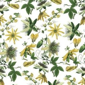 Tropicalia Floral ~ Mornin' to Ya!