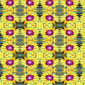 Sunflower-ed