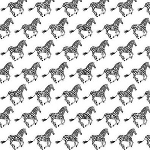 Think Zebra (small scale)