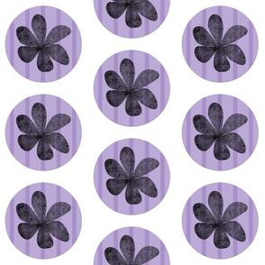 Zoey Circles