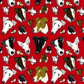 Smooth_Fox_Terrier_Fabric_RED