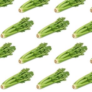 Celery for Thanksgiving!