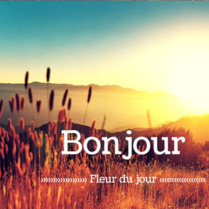 Bonjour Fleur Du Jour Pillow Spoonflower