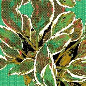 Hosta Waltz - Limited Palette