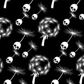 Skull Dandelion Seeds