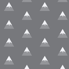 Snowy Mountain grey