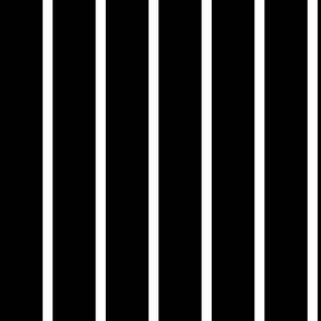 Black & White Graphic Stripe