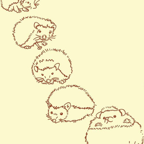 Hedgehogs Rolly-Polly