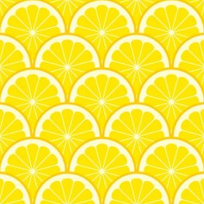 04293521 : citrus scale 1x X : lemon