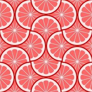 04295436 : citrus scale 4g X : R