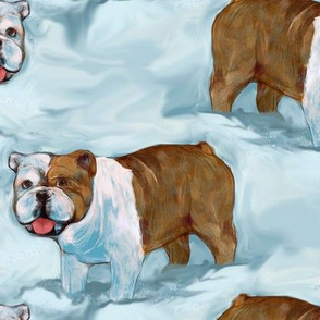 Bulldog in Snow