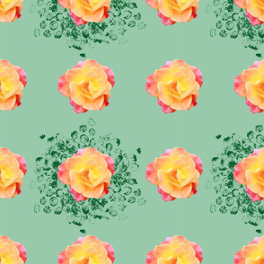 Roses Run All Over