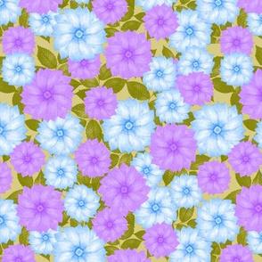 Cool Winter Flowers