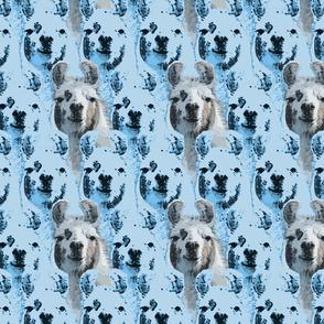 Llama faces - blue
