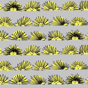 hedgehog squiggles stripe