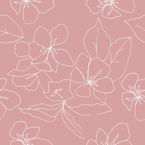 Delicate Flower Petals, Drawing on Pale Pink