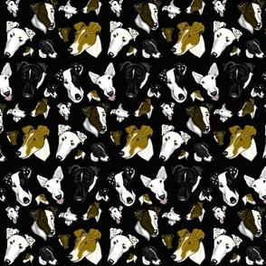 Smooth Fox Terrier~BLACK