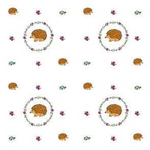 Hedgehogs in rings of flowers