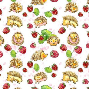 Hedgehogs and Strawberries