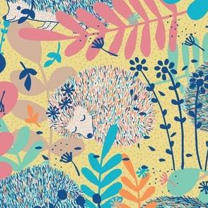 hedgehog haven