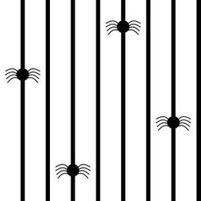 Spider Stripe