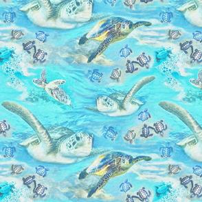 Sea Turtles Fine Grain