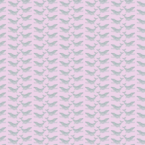 Pink Whales