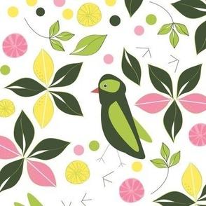 Birds In the Lemon Grove