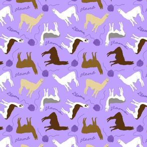 Little Llamas with yarn - purple