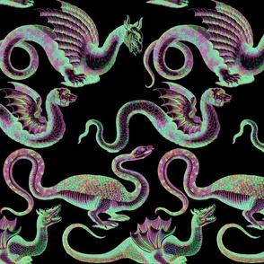 Draco ~  Black Opal