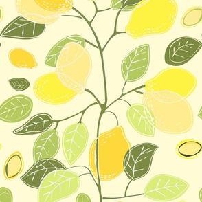Fruits of the Lemonade tree