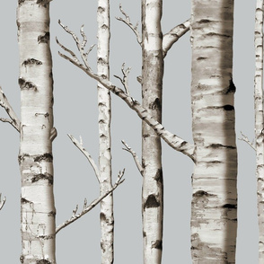 Birch Grove in Whitestone