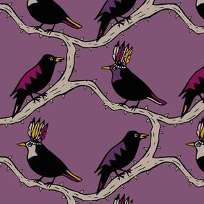 Thorn birds purple black