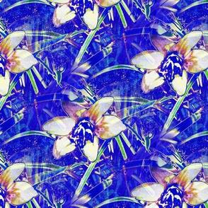 Blue Autumn Crocus