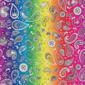 420 Rainbow Paisley
