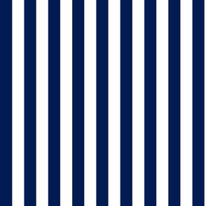 Navy Blue & White Stripe