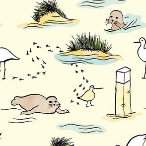 Seals and birds - life at the beach