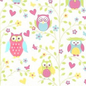 big mini owl