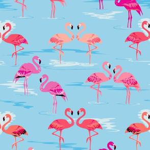 flamingos love aqua