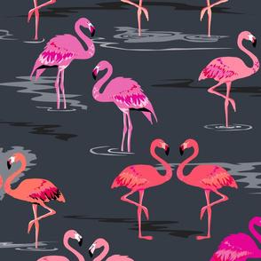 flamingos love graphite - Large