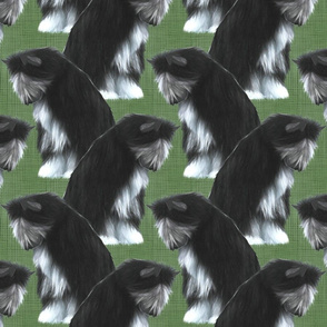Sitting Chinese Crested powder puff - green linen